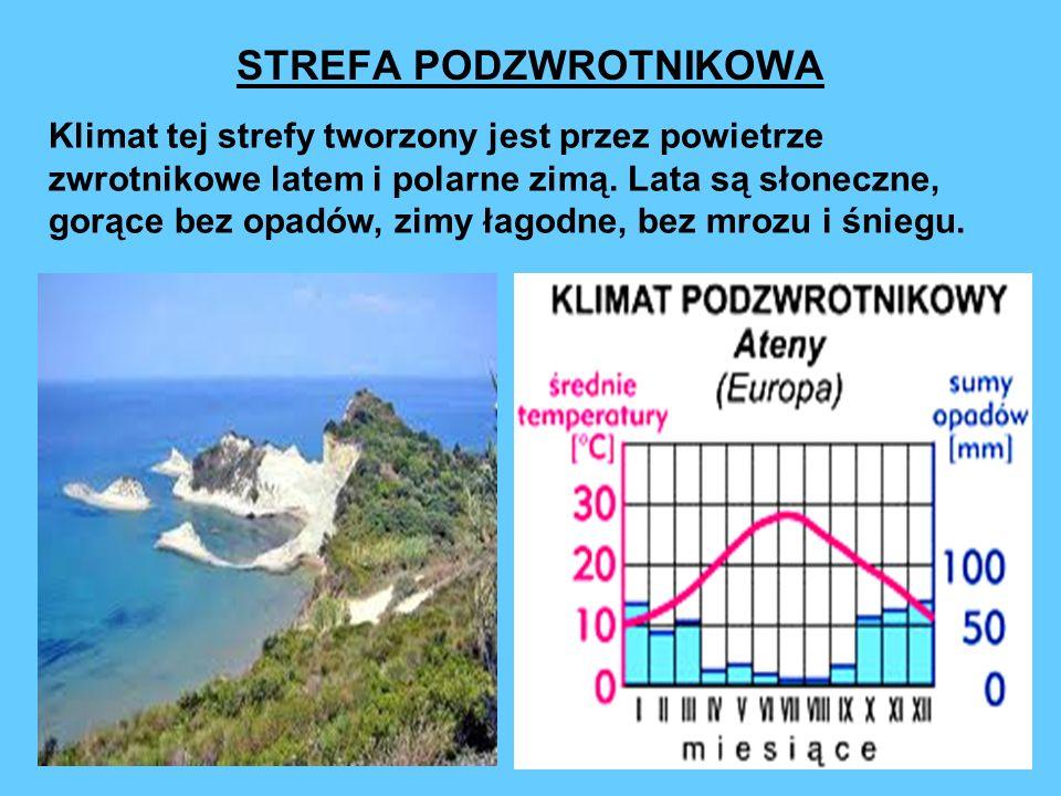 STREFA UMIARKOWANA Klimaty tej strefy są pod wpływem polarnych, arktycznych i zwrotnikowych mas powietrza.