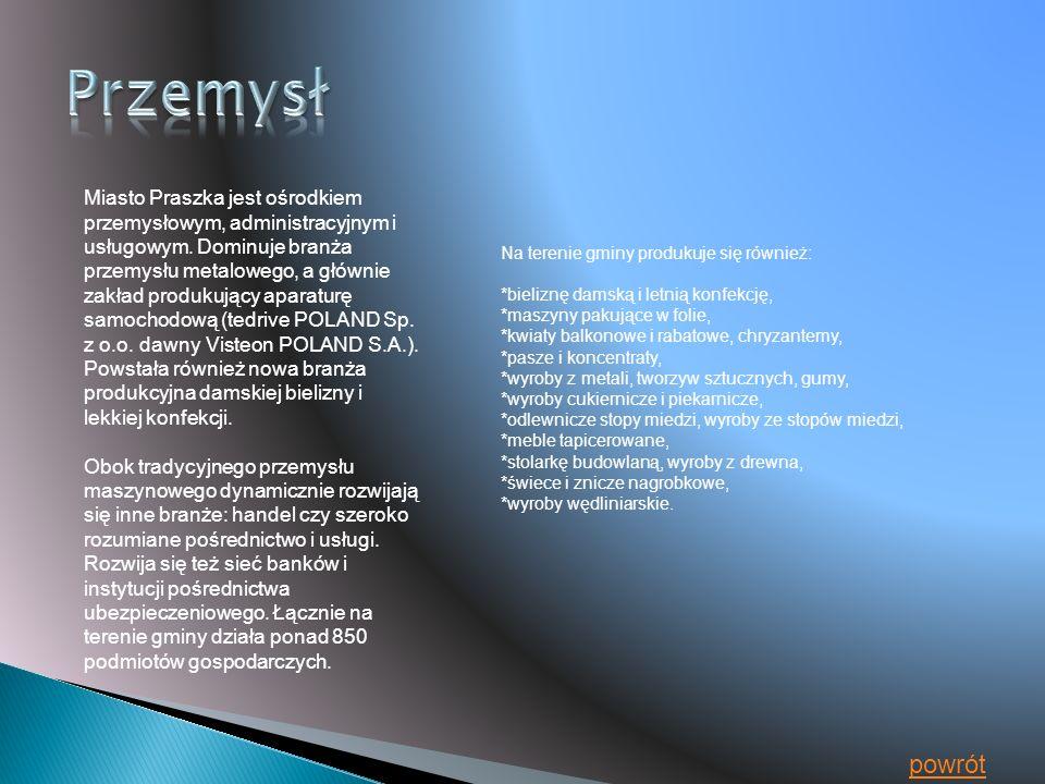 Miasto Praszka jest ośrodkiem przemysłowym, administracyjnym i usługowym.