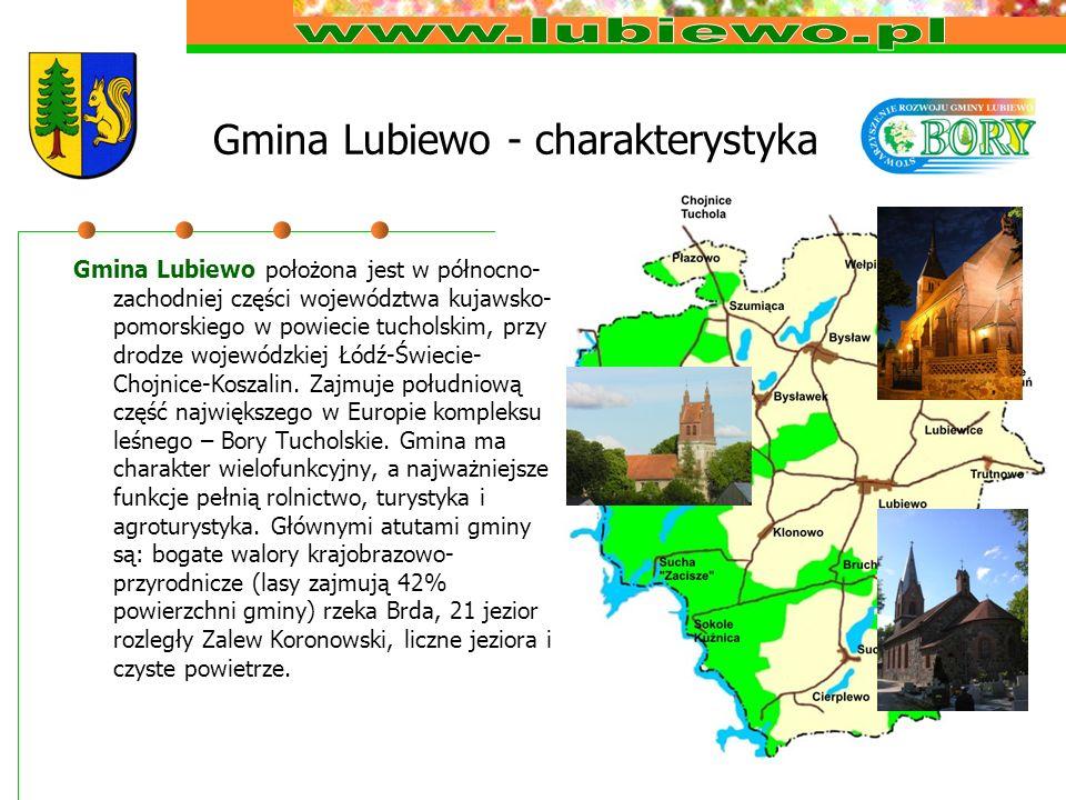Gmina Lubiewo - charakterystyka Gmina Lubiewo położona jest w północno- zachodniej części województwa kujawsko- pomorskiego w powiecie tucholskim, przy drodze wojewódzkiej Łódź-Świecie- Chojnice-Koszalin.