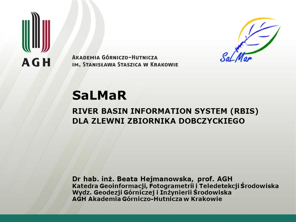 SaLMaR RIVER BASIN INFORMATION SYSTEM (RBIS) DLA ZLEWNI ZBIORNIKA DOBCZYCKIEGO Dr hab.