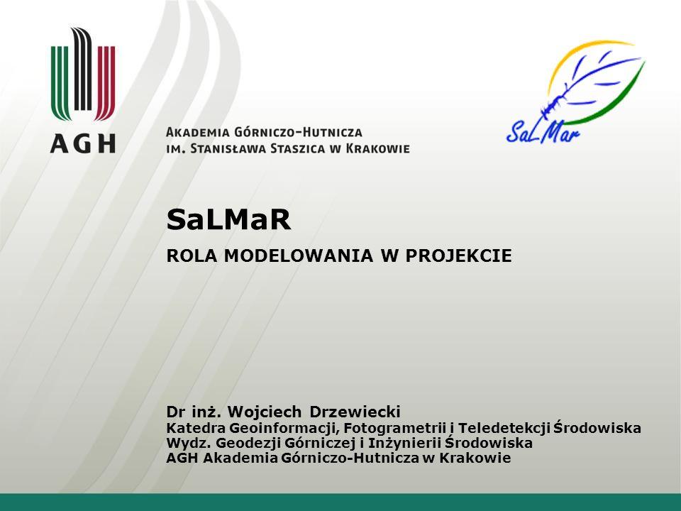 SaLMaR ROLA MODELOWANIA W PROJEKCIE Dr inż.