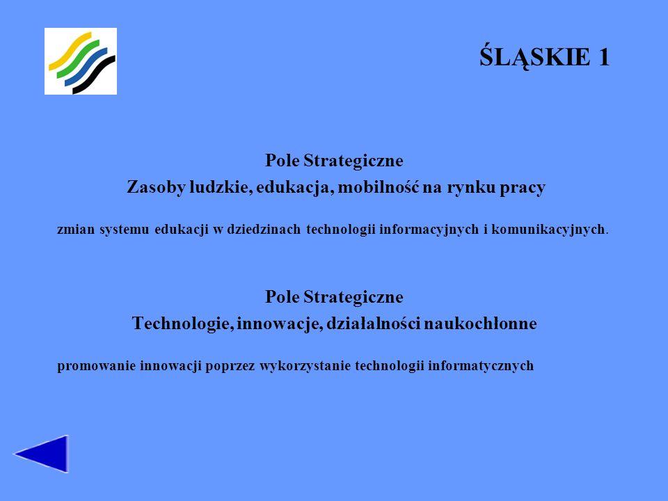 ŚLĄSKIE 2 Pole Strategiczne Transport, telekomunikacja i informacja ważna jakość infrastruktury telekomunikacyjnej, rozwoju systemu powszechnego dostępu do sieci komputerowych dostępność infrastruktury światłowodowej, rozwoju sieci informatycznych, dla zarządzania: ruchem drogowym, transportem publicznym, systemami bezpieczeństwa, systemem przeciwdziałania zagrożeniom wymianę handlową (e-commerce) sieć informacyjna dla telepracy.