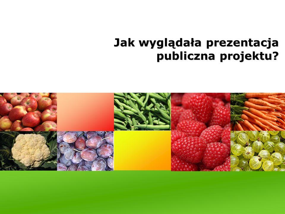 Jak wyglądała prezentacja publiczna projektu?