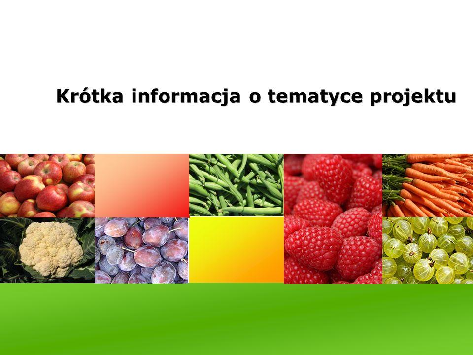 Krótka informacja o tematyce projektu