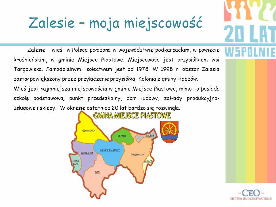Zalesie – moja miejscowość Zalesie – wieś w Polsce położona w województwie podkarpackim, w powiecie krośnieńskim, w gminie Miejsce Piastowe. Miejscowo
