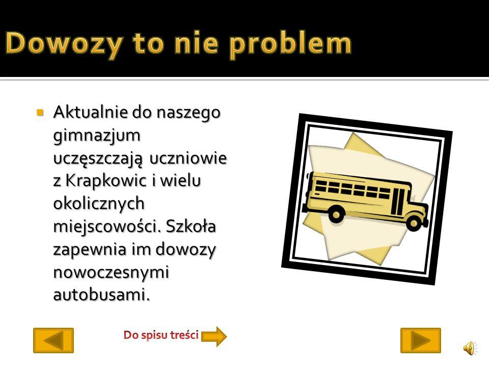 Aktualnie do naszego gimnazjum uczęszczają uczniowie z Krapkowic i wielu okolicznych miejscowości.