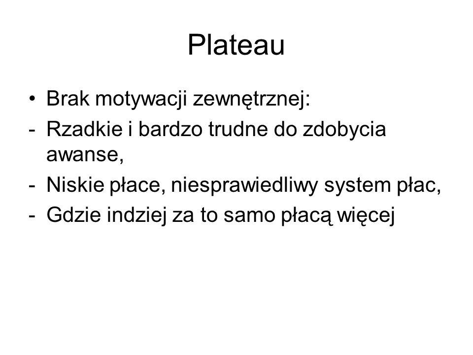 Plateau Brak motywacji zewnętrznej: -Rzadkie i bardzo trudne do zdobycia awanse, -Niskie płace, niesprawiedliwy system płac, -Gdzie indziej za to samo