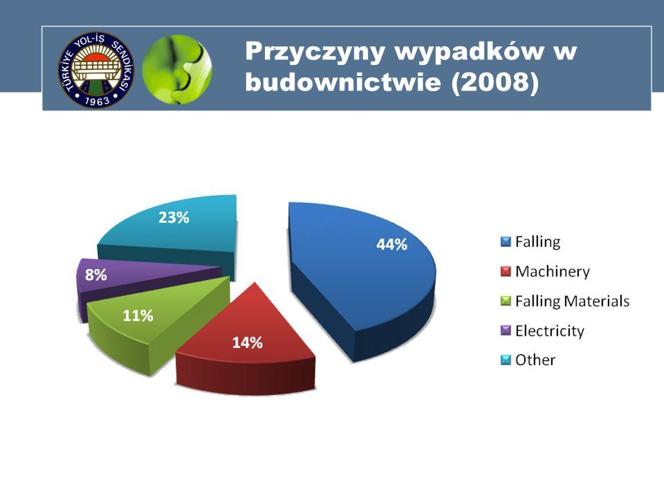 Przyczyny wypadków w budownictwie (2008)