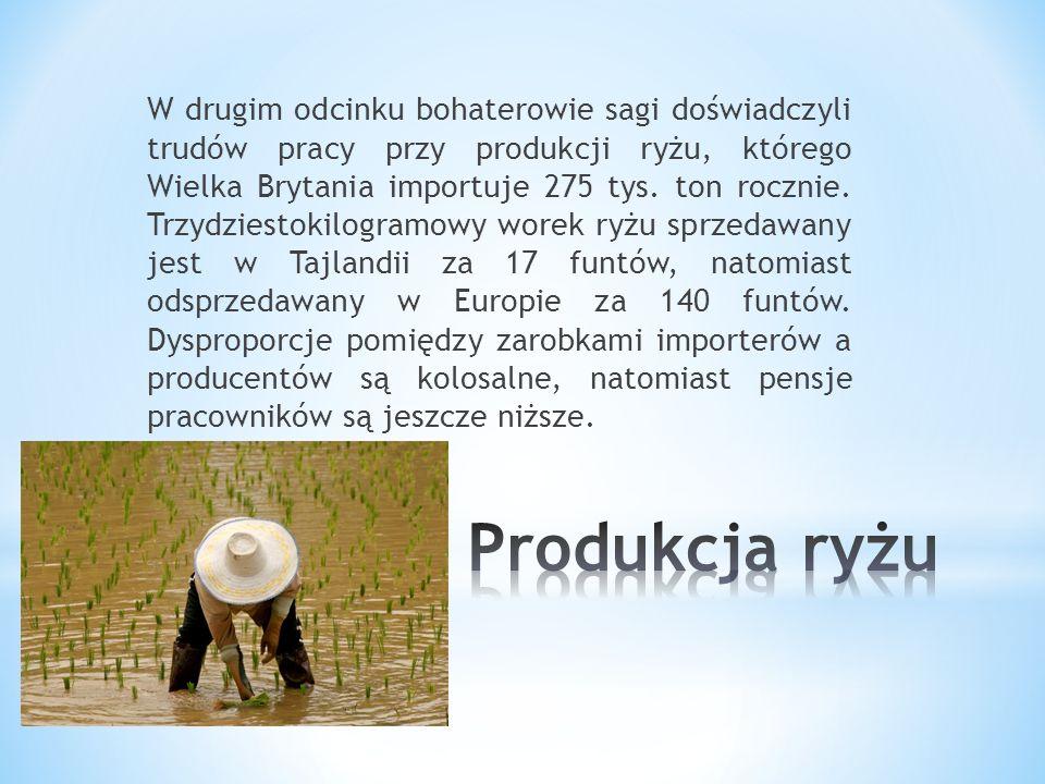 W drugim odcinku bohaterowie sagi doświadczyli trudów pracy przy produkcji ryżu, którego Wielka Brytania importuje 275 tys.