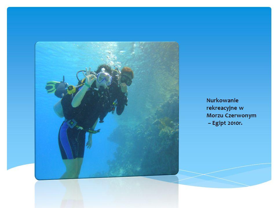 2010r. Nurkowanie rekreacyjne w Morzu Czerwonym – Egipt 2010r.