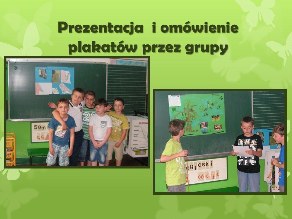Kolejne grupy prezentuj ą plakaty