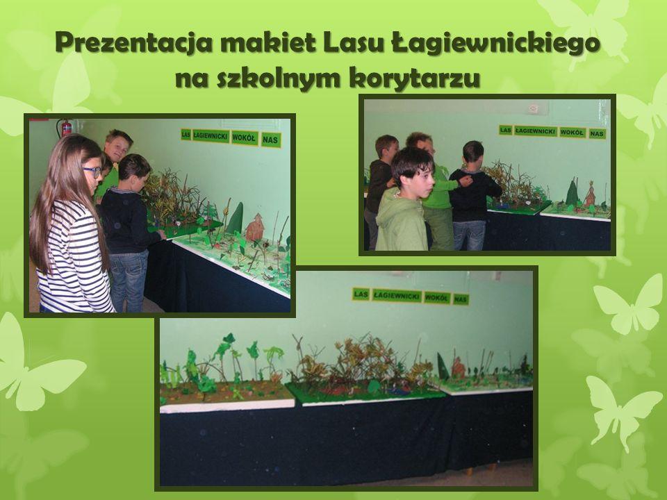 Praca z programem graficznym Paint- plakat zach ę caj ą cy do ochrony lasów
