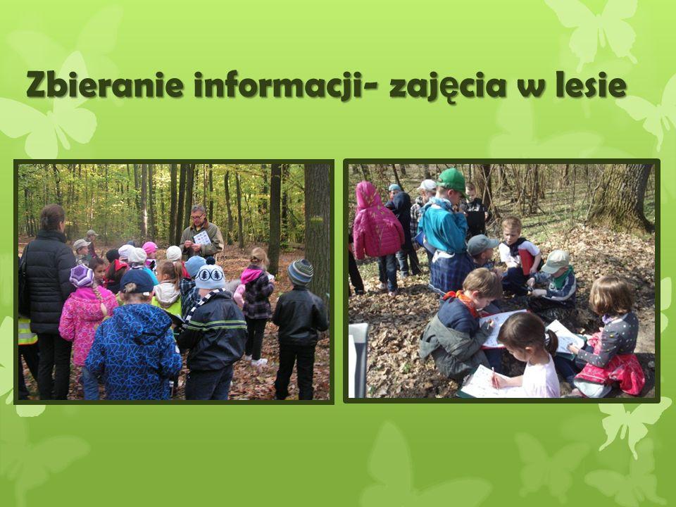 Zbieranie informacji- zaj ę cia w lesie