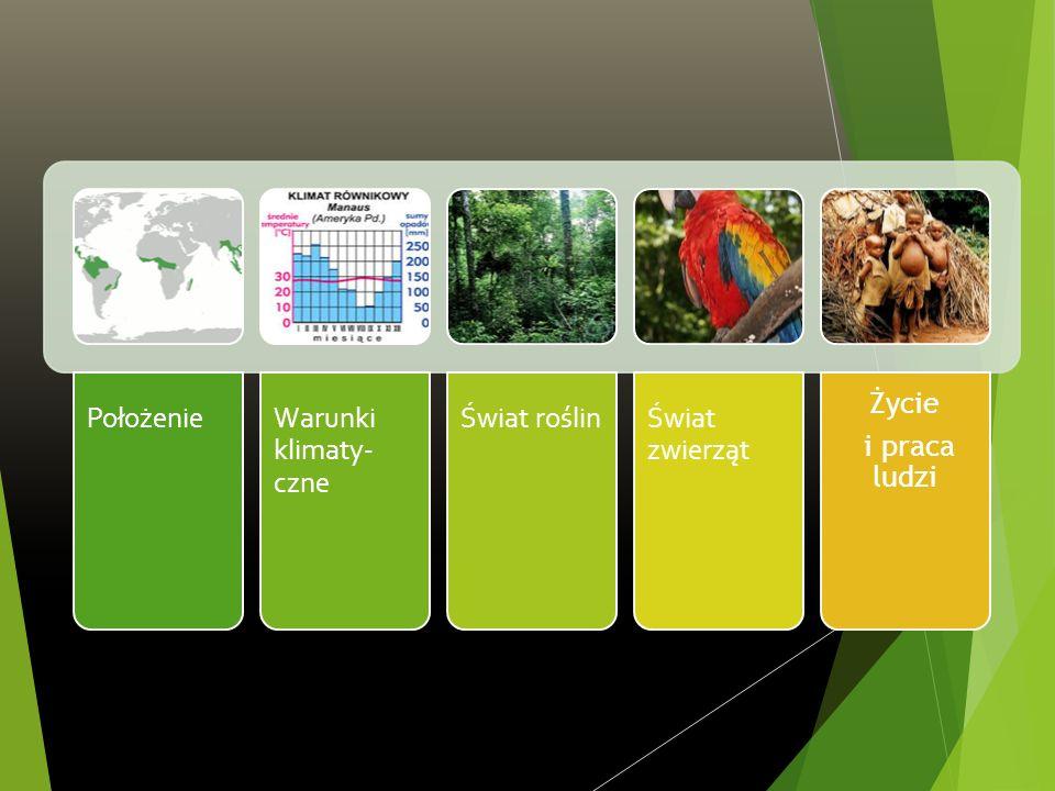 PołożenieWarunki klimaty- czne Świat roślinŚwiat zwierząt Życie i praca ludzi