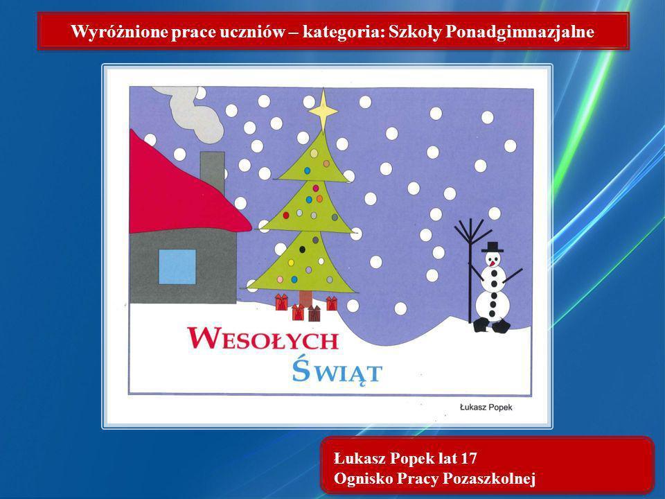 Łukasz Popek lat 17 Ognisko Pracy Pozaszkolnej Wyróżnione prace uczniów – kategoria: Szkoły Ponadgimnazjalne