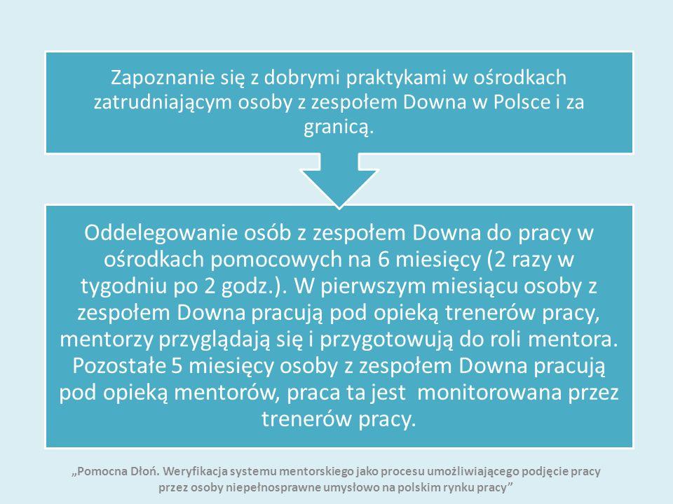 Oddelegowanie osób z zespołem Downa do pracy w ośrodkach pomocowych na 6 miesięcy (2 razy w tygodniu po 2 godz.).