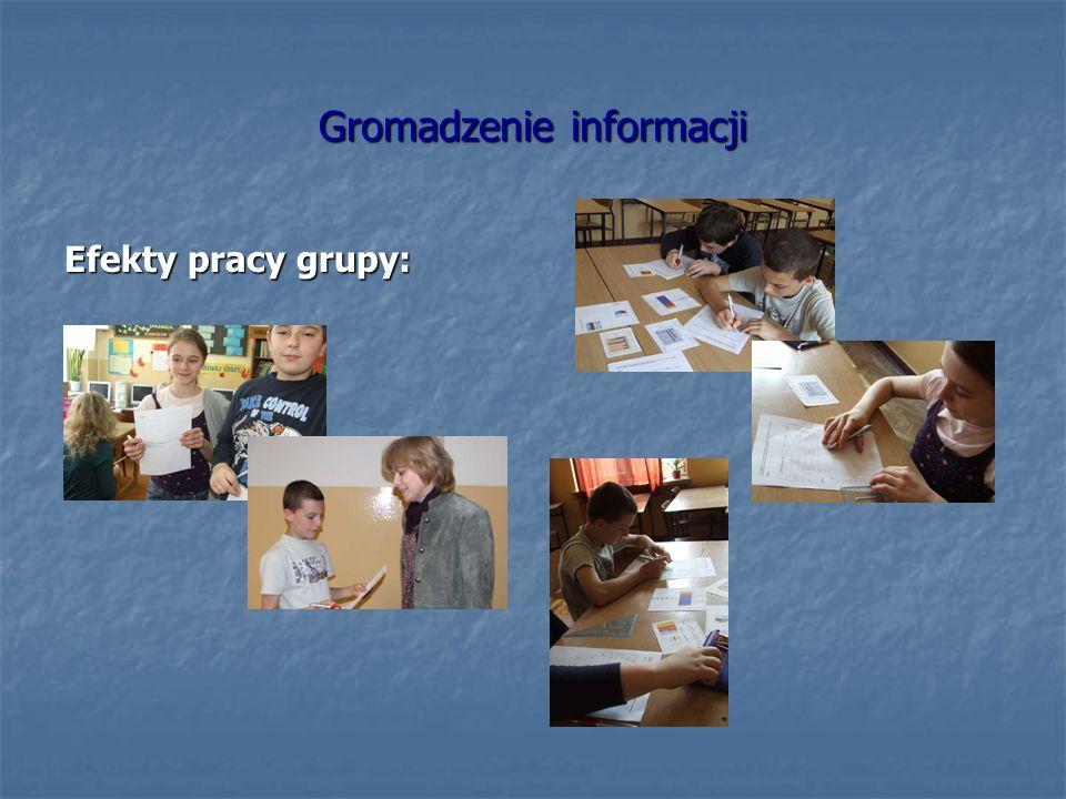 Gromadzenie informacji Efekty pracy grupy: