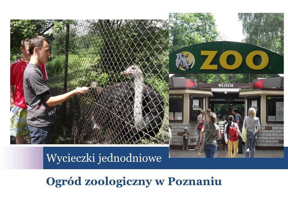 Wycieczki jednodniowe Ogród zoologiczny w Poznaniu