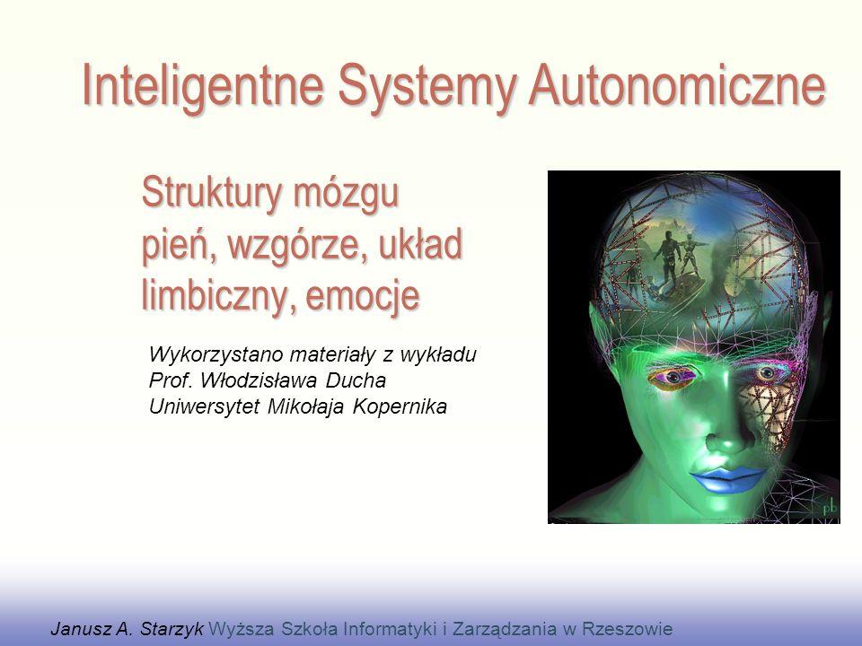 Struktury mózgu pień, wzgórze, układ limbiczny, emocje Janusz A. Starzyk Wyższa Szkoła Informatyki i Zarządzania w Rzeszowie Wykorzystano materiały z