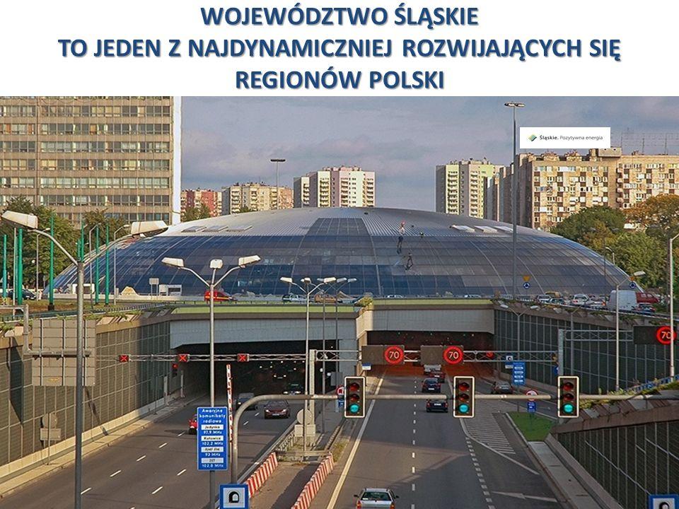 Przemysł motoryzacyjny 13 Przemysł motoryzacyjny w Polsce należy do najważniejszych sektorów polskiej gospodarki, o czym świadczy 9,5 % udział w produkcji sprzedanej oraz blisko 16 % udział w całym eksporcie z Polski w 2007 roku.