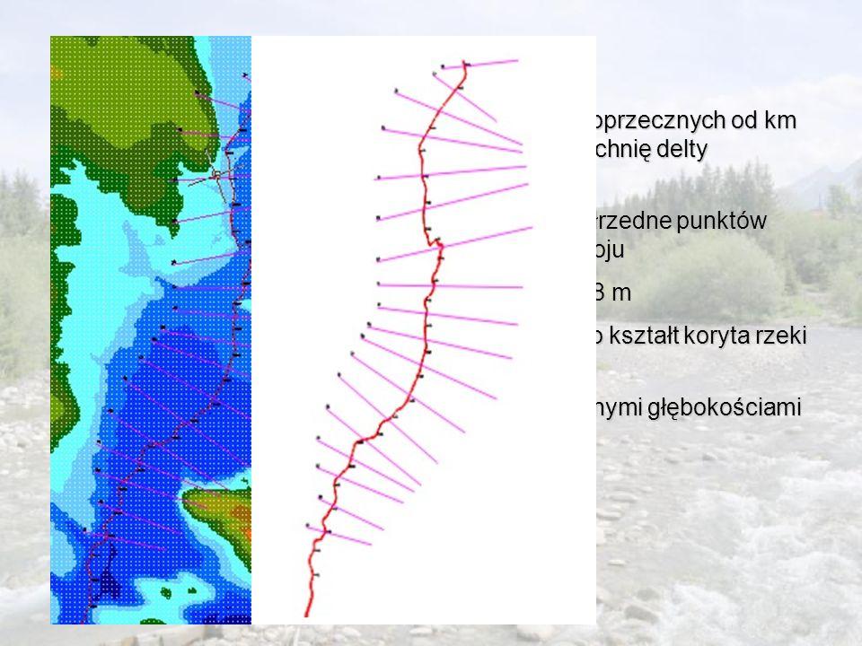 Metodyka Na mapie numerycznej założono 18 przekrojów poprzecznych od km 67+460 do km 78+477 charakteryzujących powierzchnię delty środkowej korzystając z programu Auto Cad odczytano współrzedne punktów wysokościowych doliny zalewowej w danym przekrojukorzystając z programu Auto Cad odczytano współrzedne punktów wysokościowych doliny zalewowej w danym przekroju średnia odległość między przekrojami wyniosła 648 mśrednia odległość między przekrojami wyniosła 648 m na podstawie Profilu regulacji rzeki Nidy założono kształt koryta rzeki jako trapezowy o nachyleniu skarp 1:2na podstawie Profilu regulacji rzeki Nidy założono kształt koryta rzeki jako trapezowy o nachyleniu skarp 1:2 wyznaczono profil podłużny dna rzeki wraz założonymi głębokościami korytawyznaczono profil podłużny dna rzeki wraz założonymi głębokościami koryta