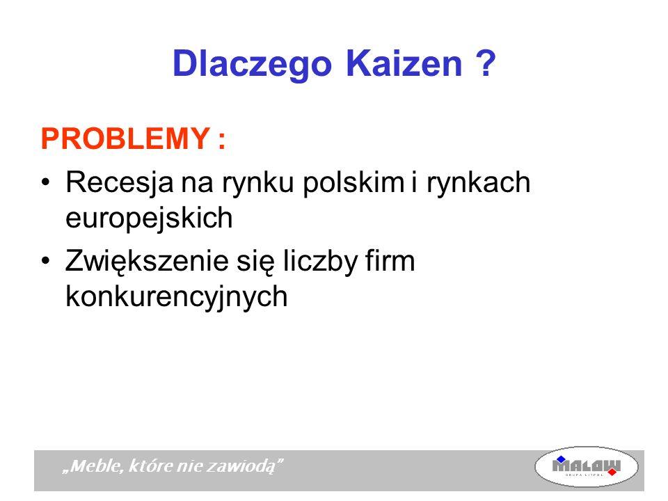 Meble, które nie zawiodą Dlaczego Kaizen ? PROBLEMY : Recesja na rynku polskim i rynkach europejskich Zwiększenie się liczby firm konkurencyjnych