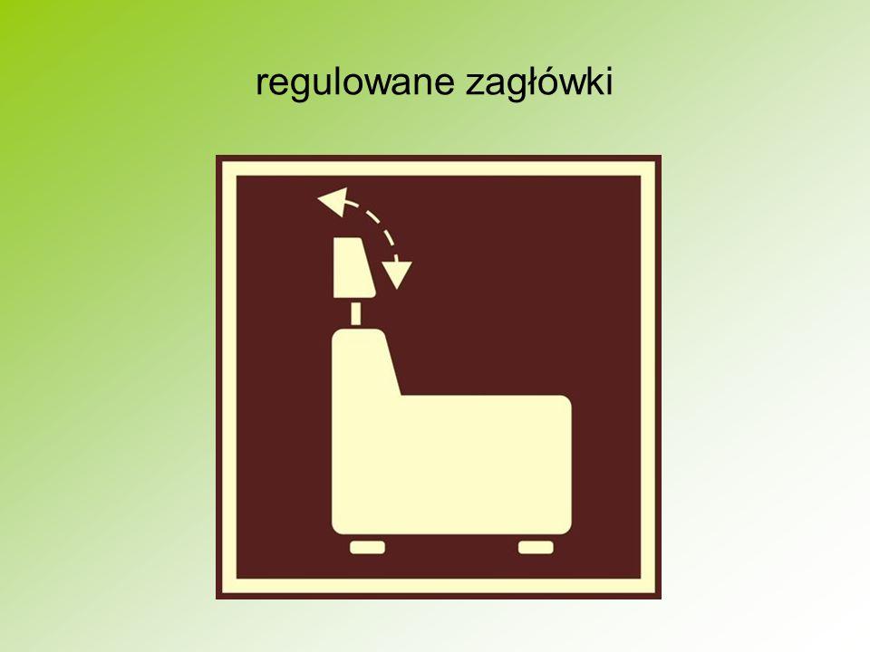 regulowane zagłówki