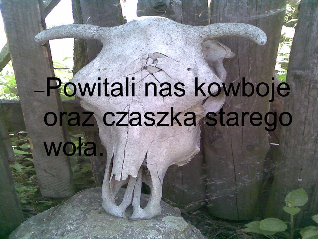 Powitali nas kowboje oraz czaszka starego woła.