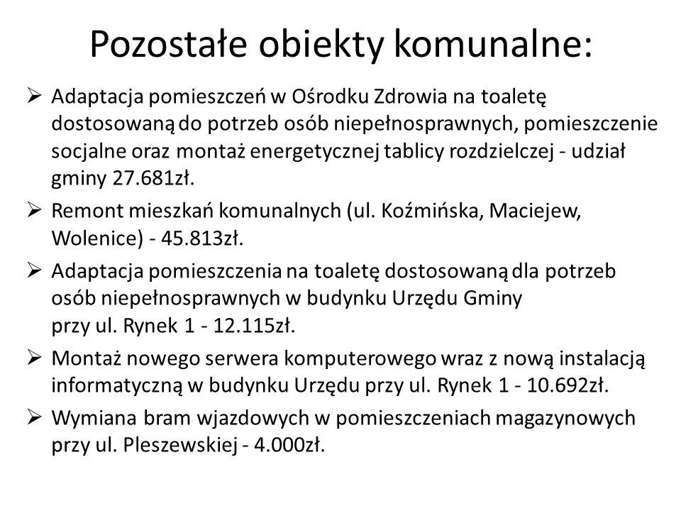 Inne znaczące wydatki: Wykonanie przyłącza wodociągowego do posesji w Trzemesznie - 18.738zł.