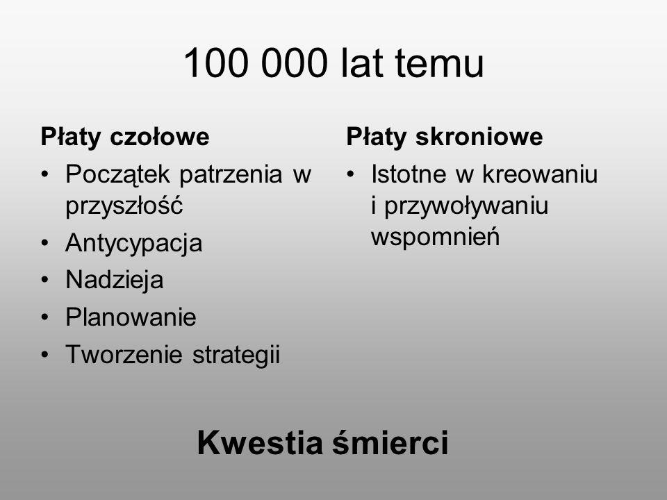 100 000 lat temu Płaty czołowe Początek patrzenia w przyszłość Antycypacja Nadzieja Planowanie Tworzenie strategii Płaty skroniowe Istotne w kreowaniu