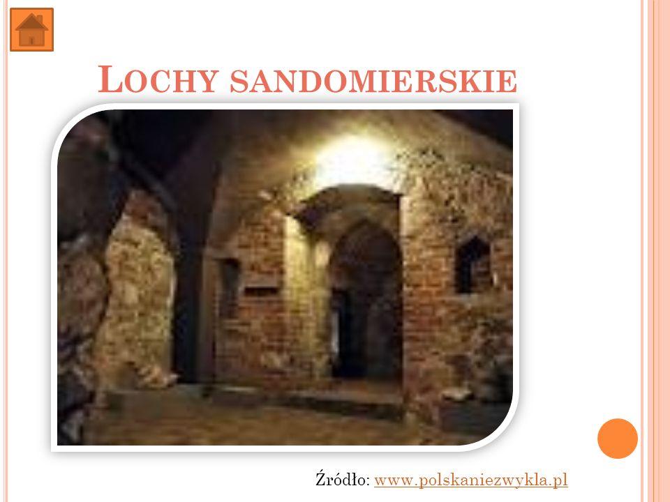 L OCHY SANDOMIERSKIE Źródło: www.polskaniezwykla.plwww.polskaniezwykla.pl