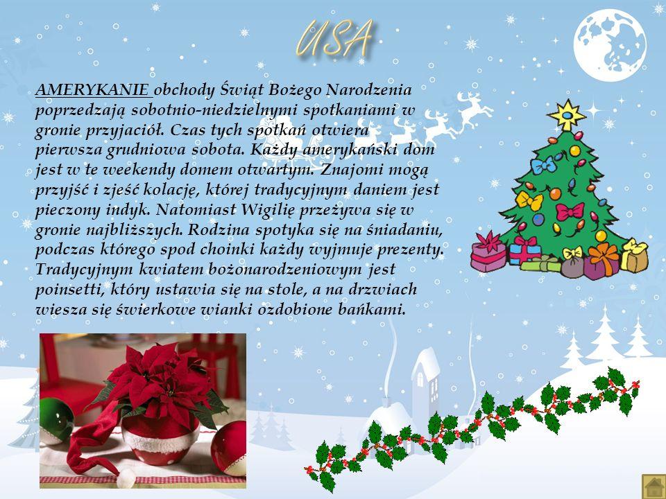 AMERYKANIE obchody Świąt Bożego Narodzenia poprzedzają sobotnio-niedzielnymi spotkaniami w gronie przyjaciół. Czas tych spotkań otwiera pierwsza grudn