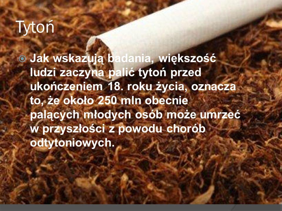 Tytoń Jak wskazują badania, większość ludzi zaczyna palić tytoń przed ukończeniem 18. roku życia, oznacza to, że około 250 mln obecnie palących młodyc