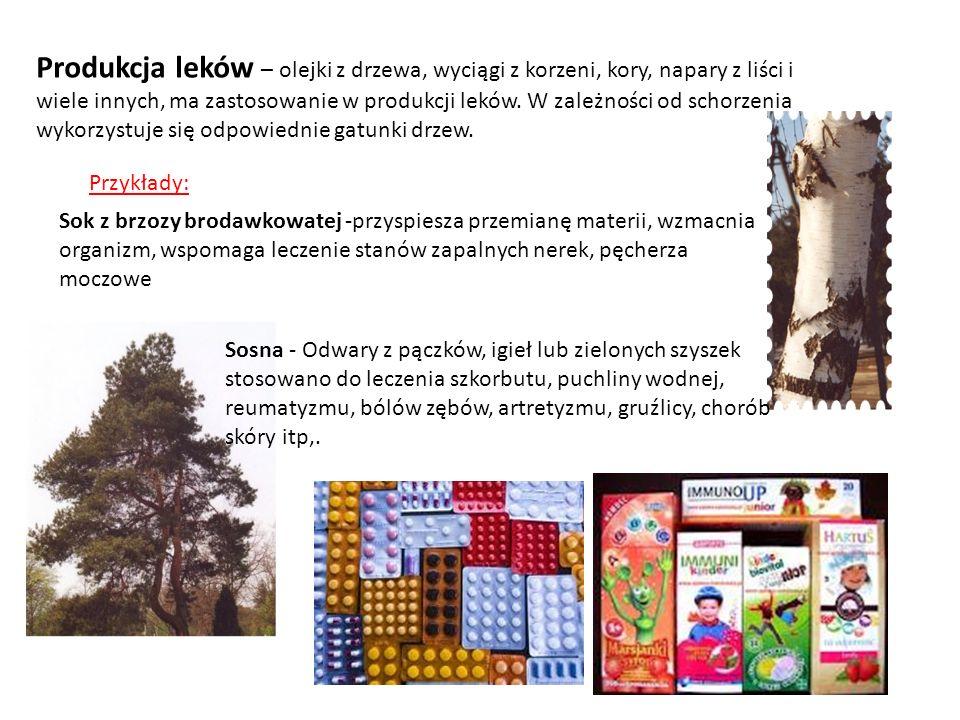 Produkcja leków – olejki z drzewa, wyciągi z korzeni, kory, napary z liści i wiele innych, ma zastosowanie w produkcji leków. W zależności od schorzen