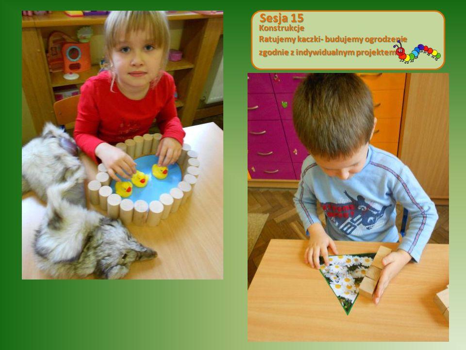 Konstrukcje Ratujemy kaczki- budujemy ogrodzenie zgodnie z indywidualnym projektem Sesja 15