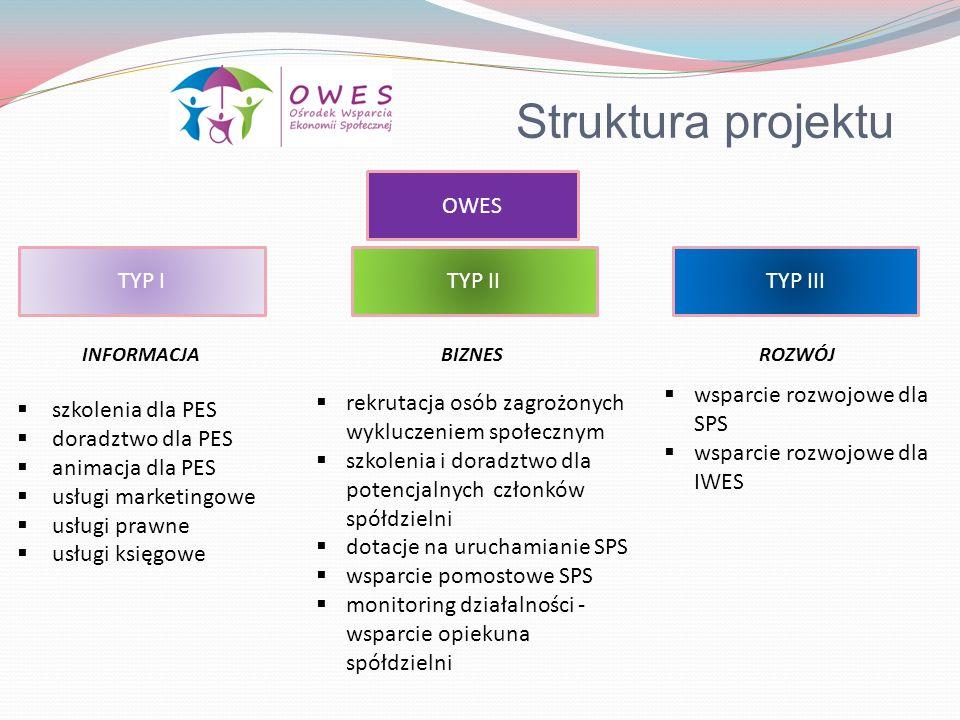 Struktura projektu OWES TYP ITYP IITYP III szkolenia dla PES doradztwo dla PES animacja dla PES usługi marketingowe usługi prawne usługi księgowe rekr
