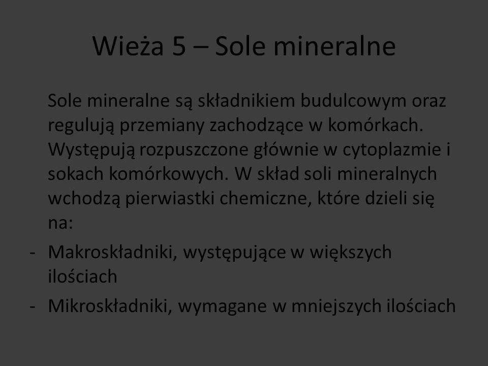 Wieża 5 – Sole mineralne Sole mineralne są składnikiem budulcowym oraz regulują przemiany zachodzące w komórkach. Występują rozpuszczone głównie w cyt