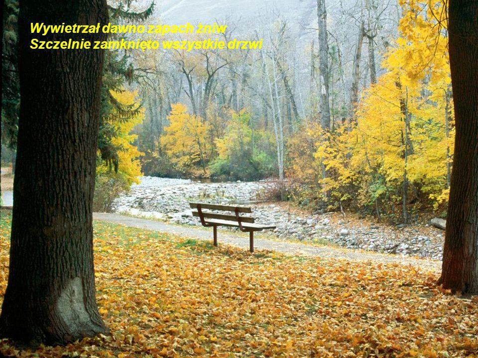 Koncert, koncert, koncert jesienny na dwa świerszcze i wiatr w kominie Koncert, co z babim latem odpłynie…