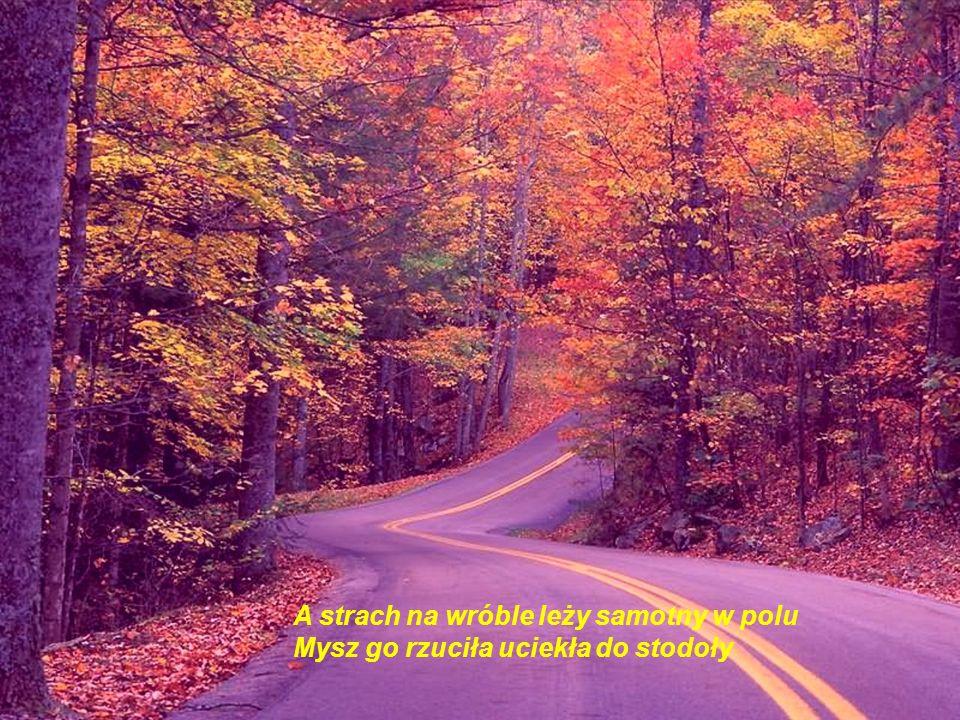Koncert jesienny na dwa świerszcze i wiatr w kominie Uciekł na drogę pokochał wierzbę i nagle gdzieś się rozpłynął