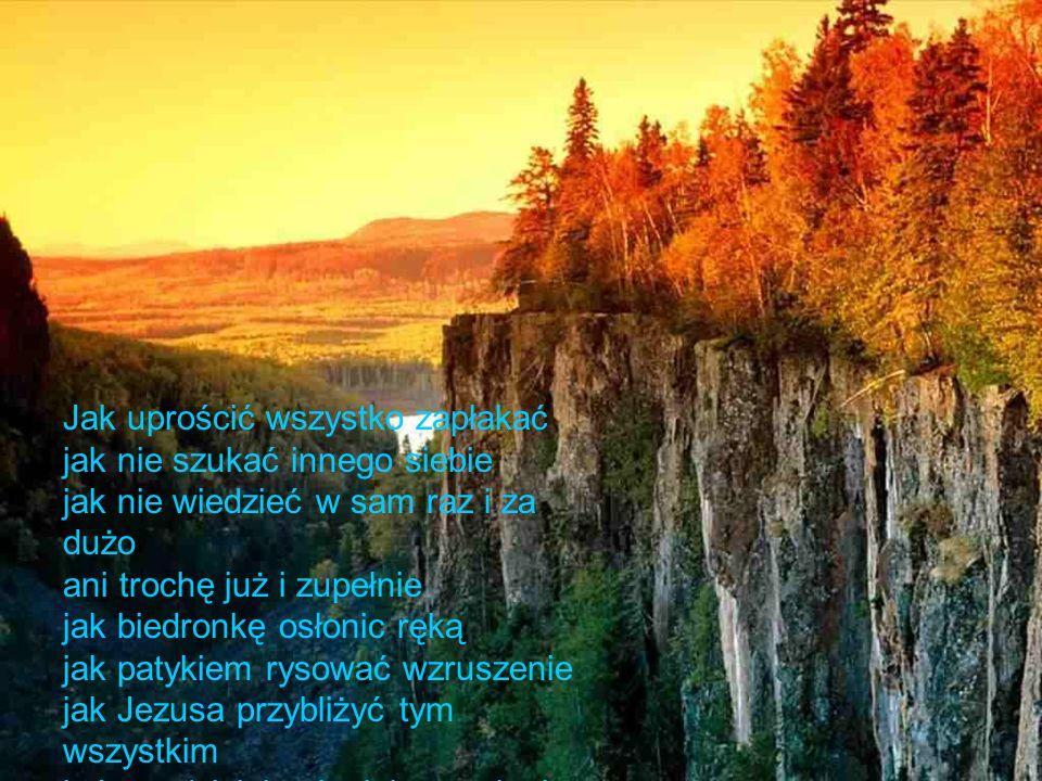 święty Florianie od pożaru święty Tadeuszu od burzy święta Agnieszko od tego co najprościej ocal jak szafirek co się pojawia w kwietniu przyjaźń w miłości bo wierna i nie dostaje bzika.