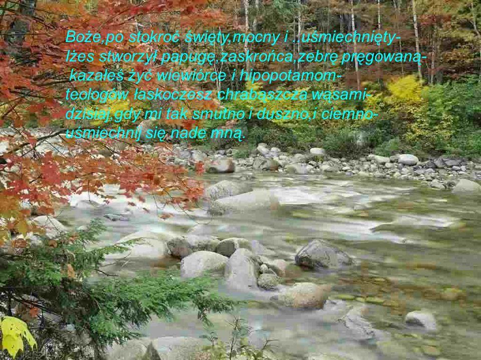 Jak uprościć wszystko zapłakać jak nie szukać innego siebie jak nie wiedzieć w sam raz i za dużo ani trochę już i zupełnie jak biedronkę osłonic ręką jak patykiem rysować wzruszenie jak Jezusa przybliżyć tym wszystkim którym dzisiaj zgłupiało sumienie