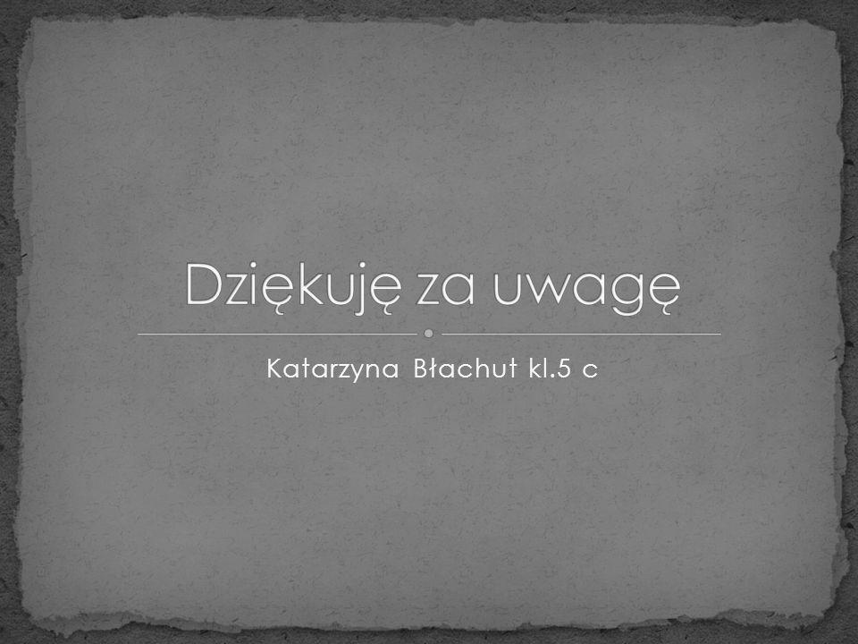Katarzyna Błachut kl.5 c
