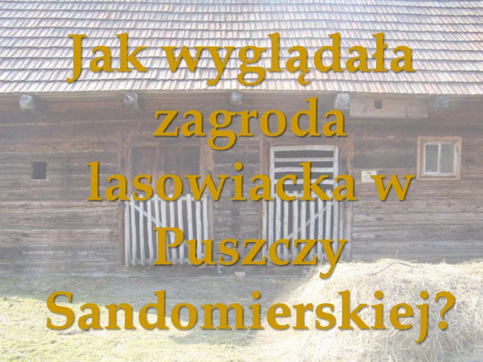 Jak wyglądała zagroda lasowiacka w Puszczy Sandomierskiej?
