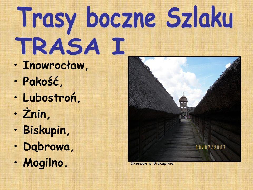 Inowrocław, Pakość, Lubostroń, Żnin, Biskupin, Dąbrowa, Mogilno. Skansen w Biskupinie