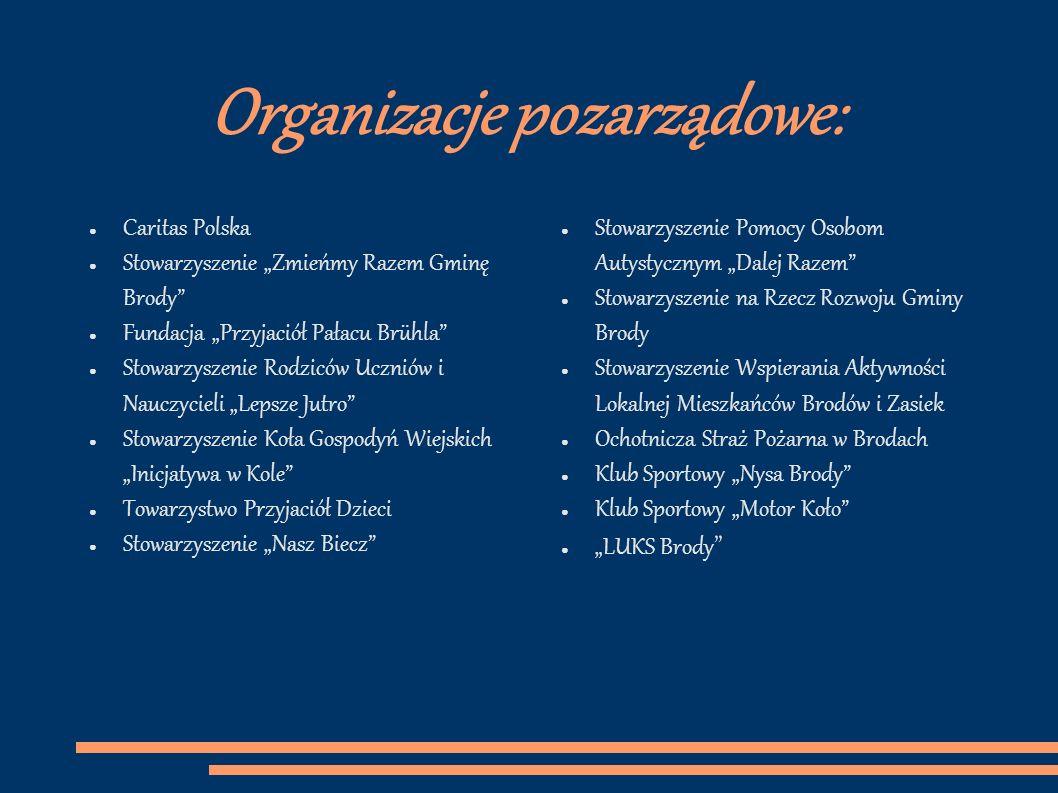 Platforma strony ngo.pl