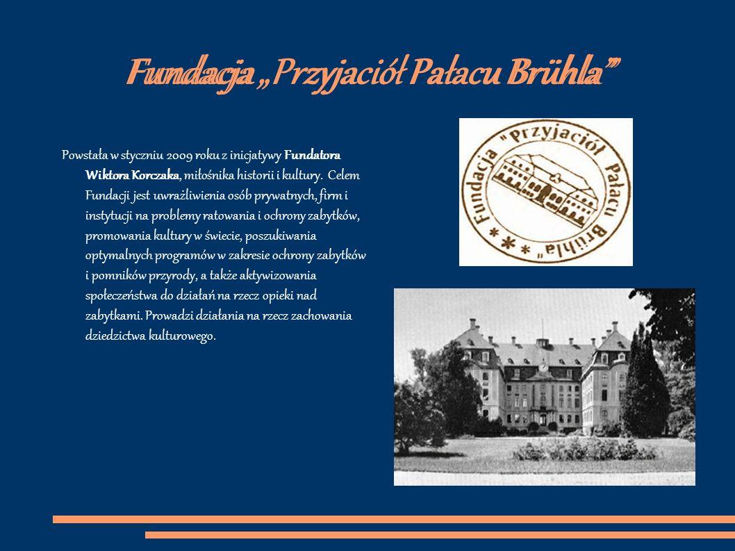 Bibliografia http://www.lepszejutro.free.ngo.pl/_/ http://www.przyjacielepalacu.pl/ http://brody.free.ngo.pl/ http://nysabrody.futbolowo.pl/ http://motorkolo.futbolowo.pl/