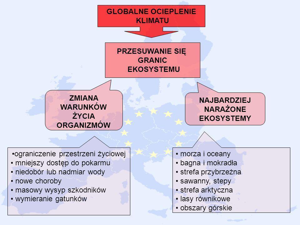 GLOBALNE OCIEPLENIE KLIMATU ZMIANA WARUNKÓW ŻYCIA ORGANIZMÓW PRZESUWANIE SIĘ GRANIC EKOSYSTEMU NAJBARDZIEJ NARAŻONE EKOSYSTEMY ograniczenie przestrzen