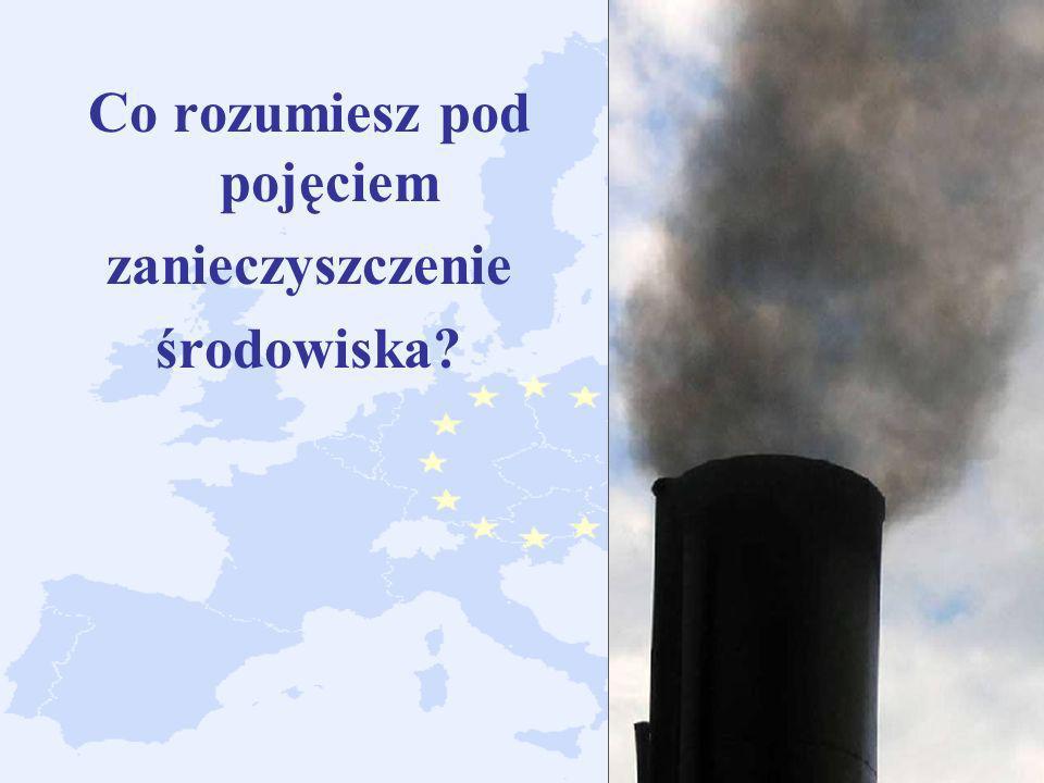 Co rozumiesz pod pojęciem zanieczyszczenie środowiska?