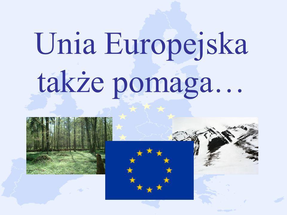 Unia Europejska także pomaga…