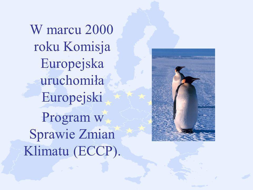 W marcu 2000 roku Komisja Europejska uruchomiła Europejski Program w Sprawie Zmian Klimatu (ECCP).